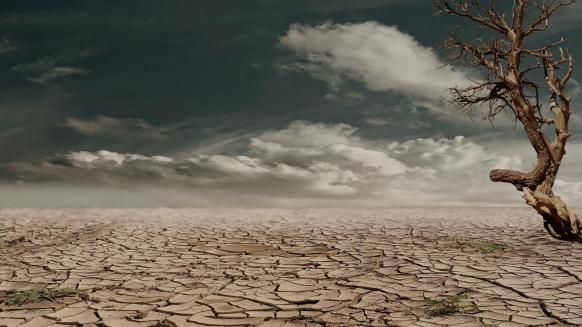 stock photo of desert